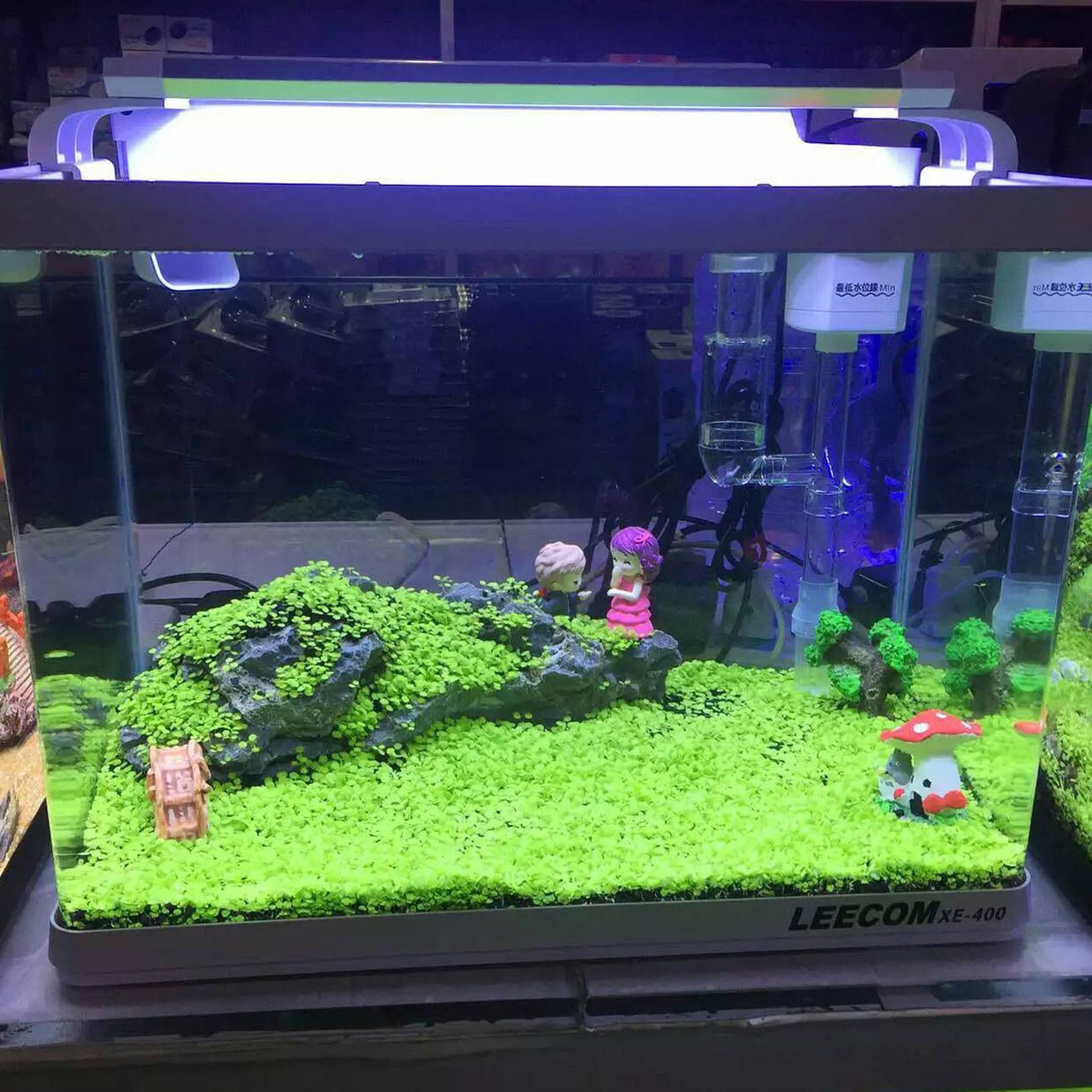 Fish tank aquarium plant decor seed cute aquatic double for Plants for fish tank