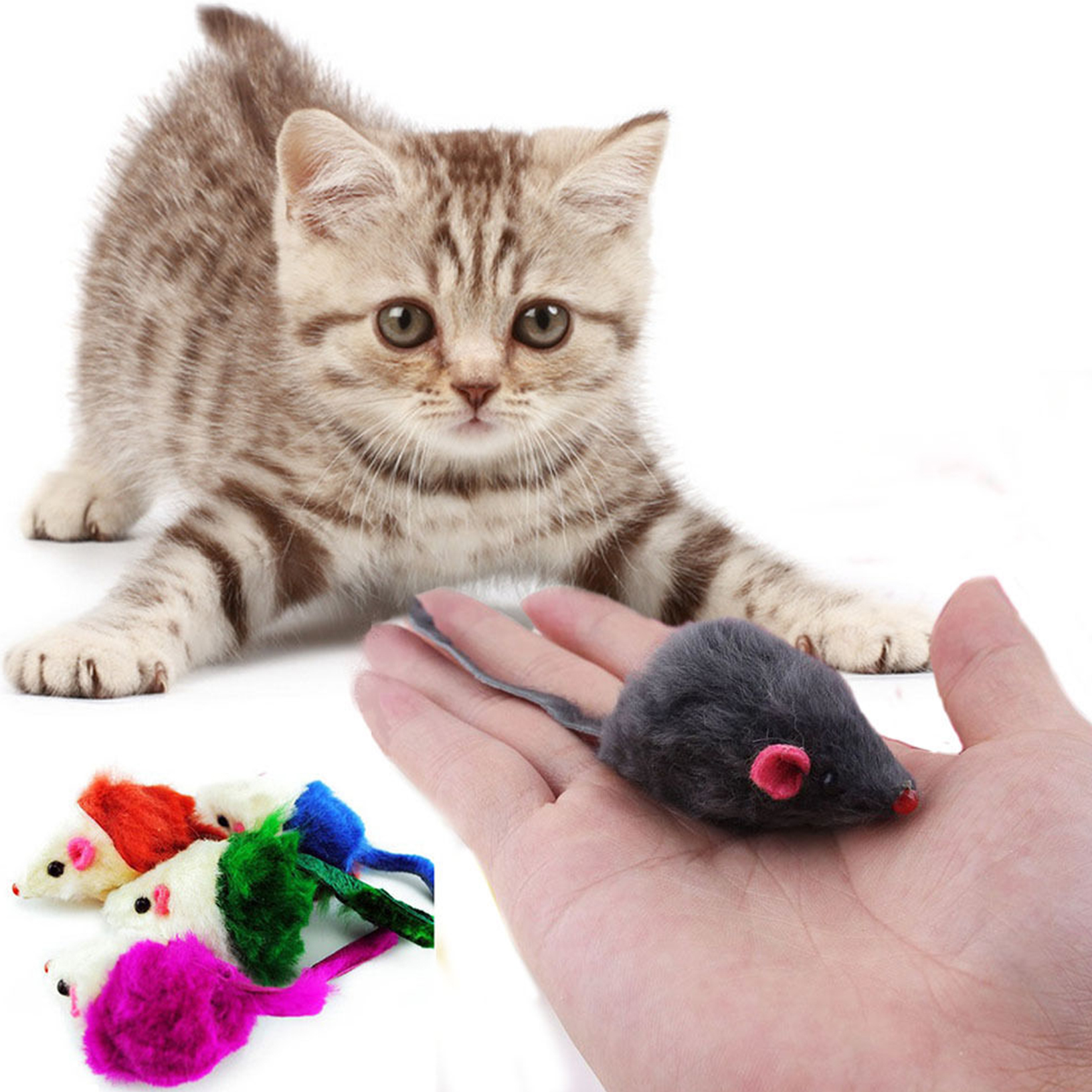 10pcs couleur fausse souris en peluche jouets pour animaux chat chaton toys ebay. Black Bedroom Furniture Sets. Home Design Ideas