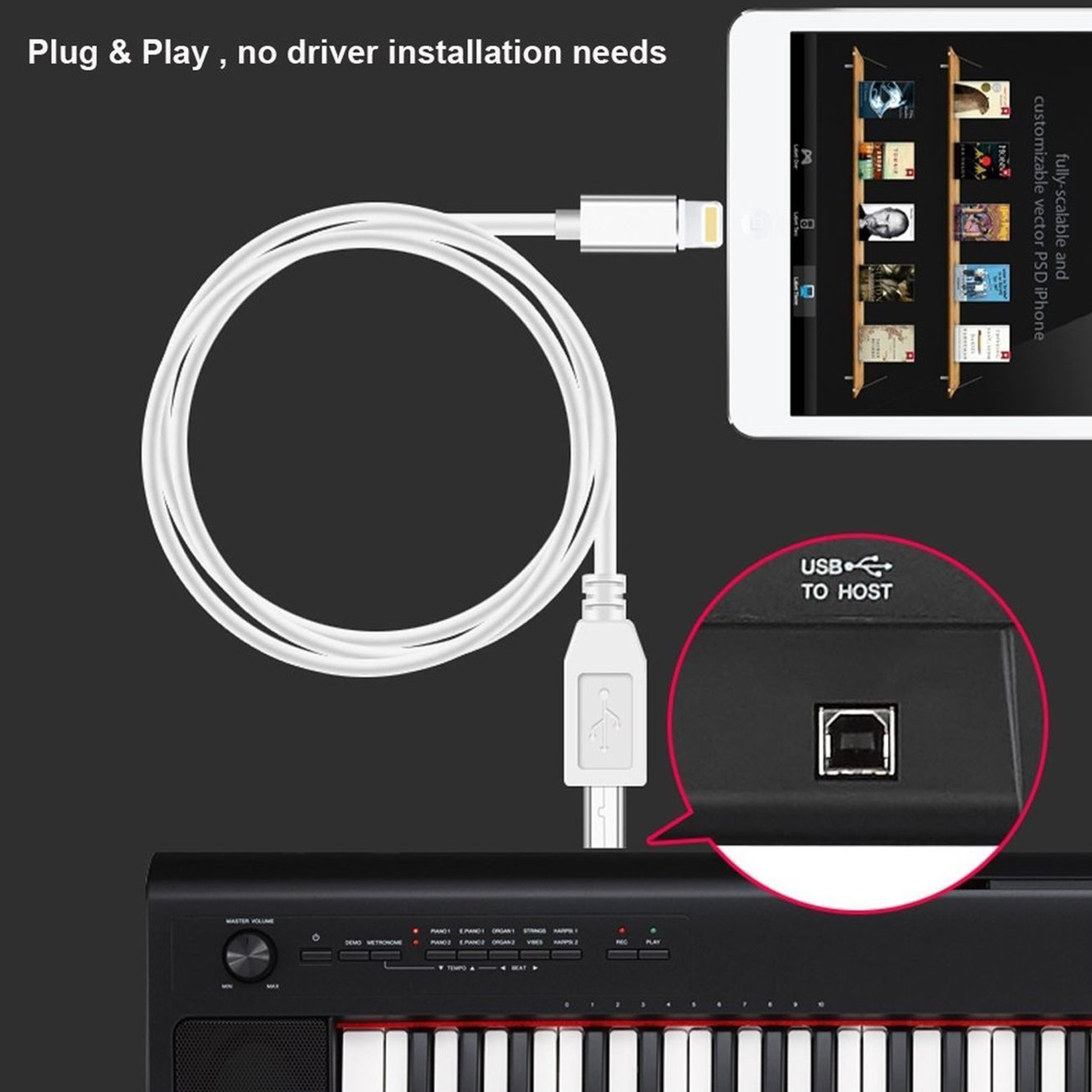 Details about Lightning to MIDI Cable Type-B Cord for iPhone / iPad /  Converter Midi Keyboard